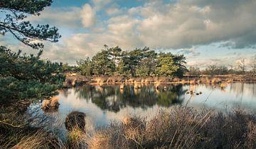 De Malpie, natuurgebied in Noord-Brabant, Nederland van Sven Wildschut