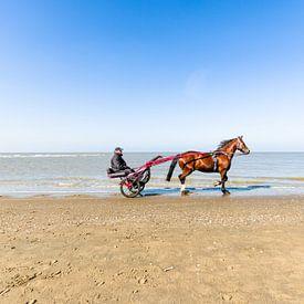 Met paard en wagen over het strand van Tony Buijse