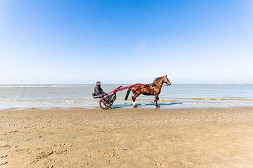 Met paard en wagen over het strand von Tony Buijse