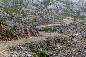 Wanderer in den Picos de Europa von Easycopters