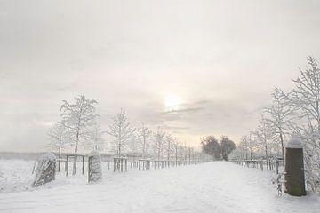 Winter landschap van Ingrid Van Damme fotografie