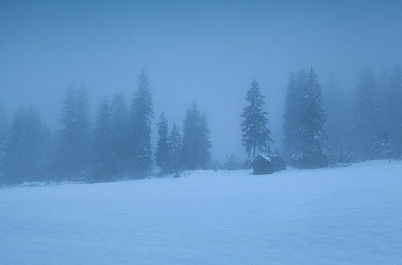 Deep winter van Olha Rohulya