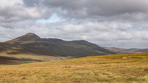 Scottish Hills van