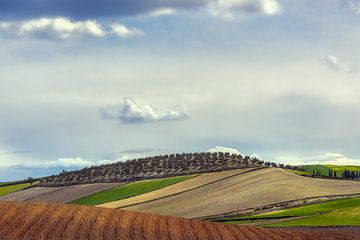 Glooiend landschap Andalusië van Peter Poppe