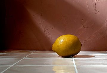 Zitronen im Paradies von Rose Mentink