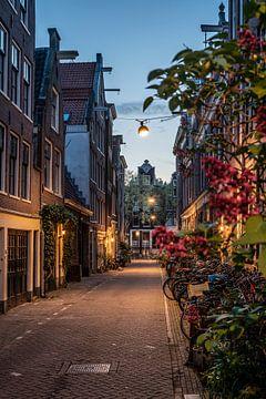 Ein Abend in Amsterdam von Manuuu S