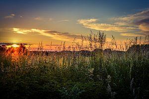 Summer sunset von Nathalie Labrosse