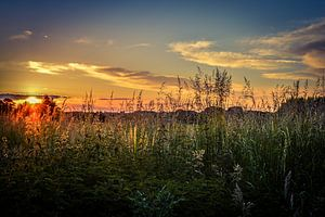 Summer sunset van Nathalie Labrosse