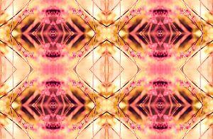 PINK SPANGLES no9-R3