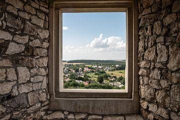 doorkijkje op het platteland vanuit een kasteel van Eric van Nieuwland