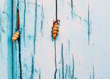 Schroeven door hout van Anne Reitsma