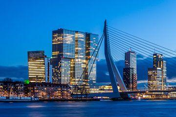 Erasmusbrug De Rotterdam van RvR Photography (Reginald van Ravesteijn)