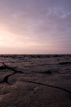 Mudflat Textures von Anna Groenia