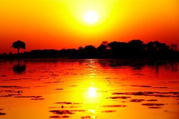Afrikaanse Zonsondergang Okavangodelta  van Dexter Reijsmeijer