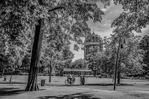 Breda - Park Valkenberg - Zwart Wit