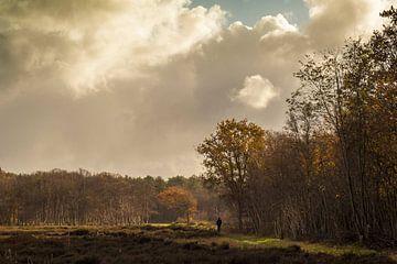 Wandelaar met hond op Texel van Margreet Frowijn