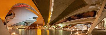 Valencia  stad van kunst en wetenschappen van Ko Hoogesteger