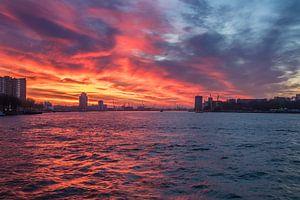 Zonsondergang in de Rotterdamse haven van