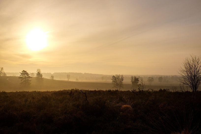 Een mistige ochtend van Johan Vanbockryck