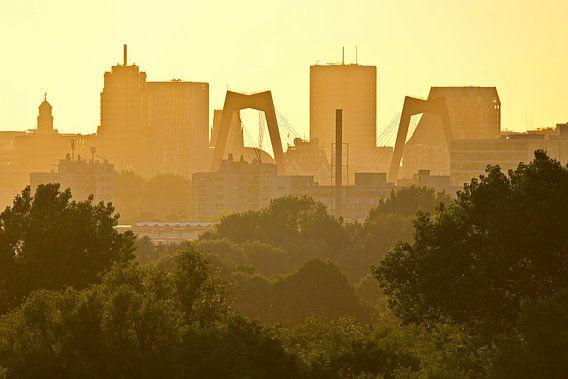 Rotterdam à la fin du soleil du soir