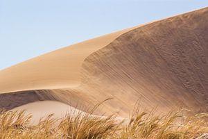Sand dune van