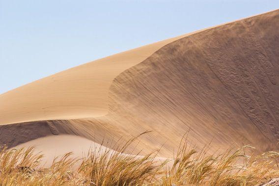 Sand dune van Katrin Engl