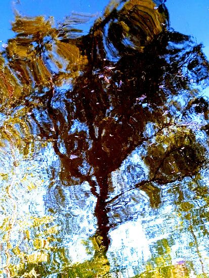 Tree Magic 188-A van MoArt (Maurice Heuts)