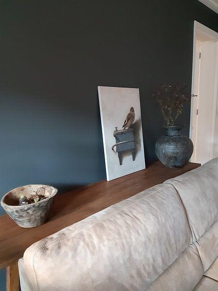 Kundenfoto: Der Distelfink von Carel Fabritius