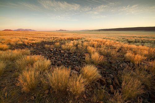 Landschap in Afrika