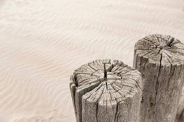 Verweerde houten palen op het strand. van Ron van der Stappen