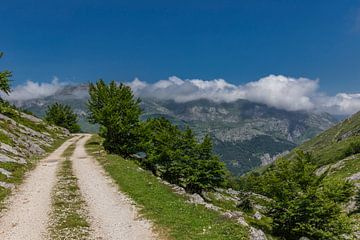 Bergpass in den Picos de Europa von Easycopters