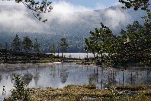 Ochtendnevel aan een prachtige meer