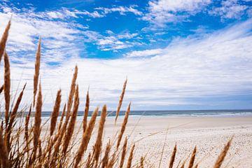 La Torche Strand von Patrick Bongers