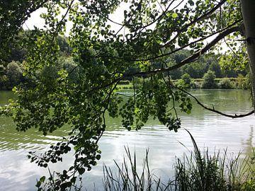 Ellertshäuser See van