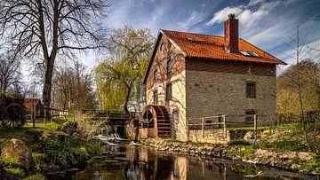Knollmeyer's molen van Marita Autering