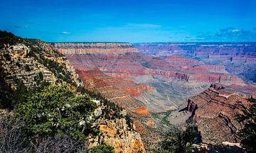 Grand Canyon vanaf de South Rim van Rietje Bulthuis
