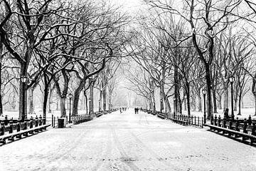 New York City, Winter (schwarzweiß) von Sascha Kilmer