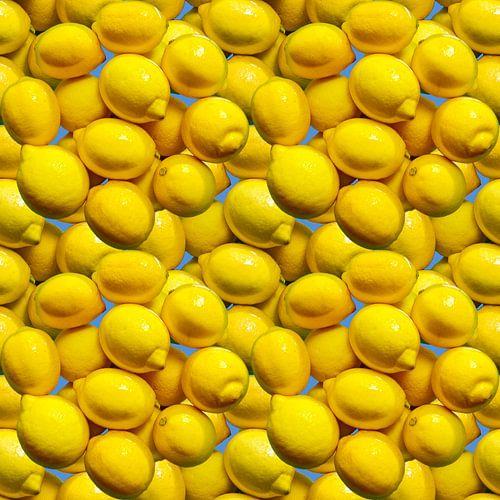 Lemons sur Leopold Brix