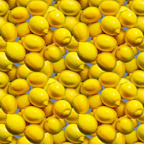 Lemons van Leopold Brix