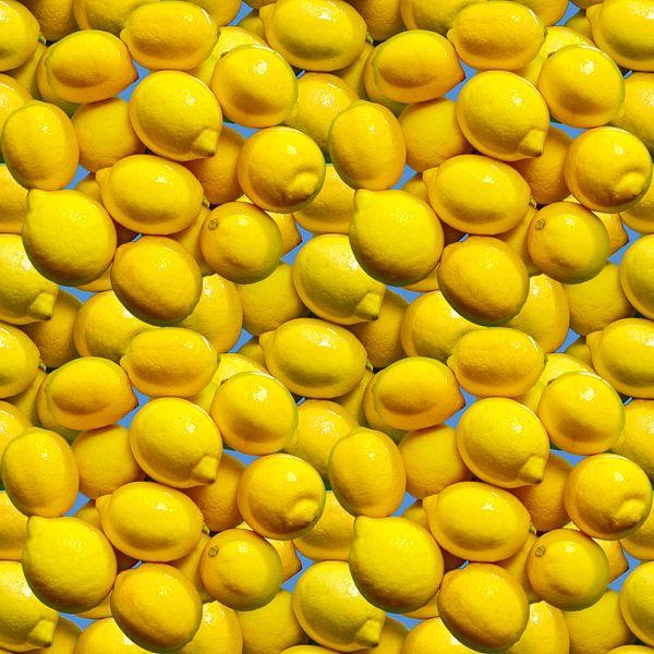 Zitronen von Leopold Brix