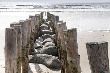 Strandschutz in Blåvand von Danny Tchi Photography