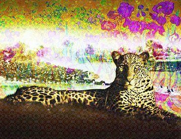 Leopard von Zanolino, Richter und Van Gogh