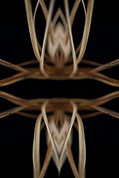 symmetrische stengels #002 van Peter Baak