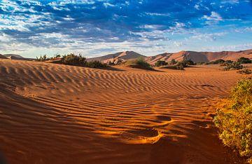 Ochtendlicht over de duinen van de Sossus vallei, Namibië van Rietje Bulthuis