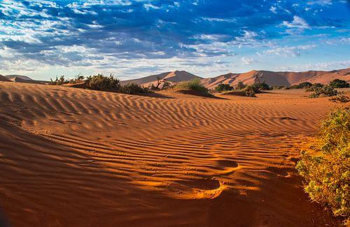 Ochtendlicht over de duinen van de Sossus vallei, Namibië