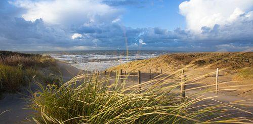Strand, Dünen und Wind von Arjan van Duijvenboden