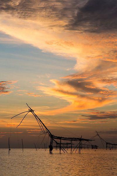 Visnetten in de wetlands van Phattalung, Thailand van Johan Zwarthoed