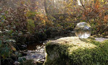 Kristallkugel auf Fels von Betty Heideman