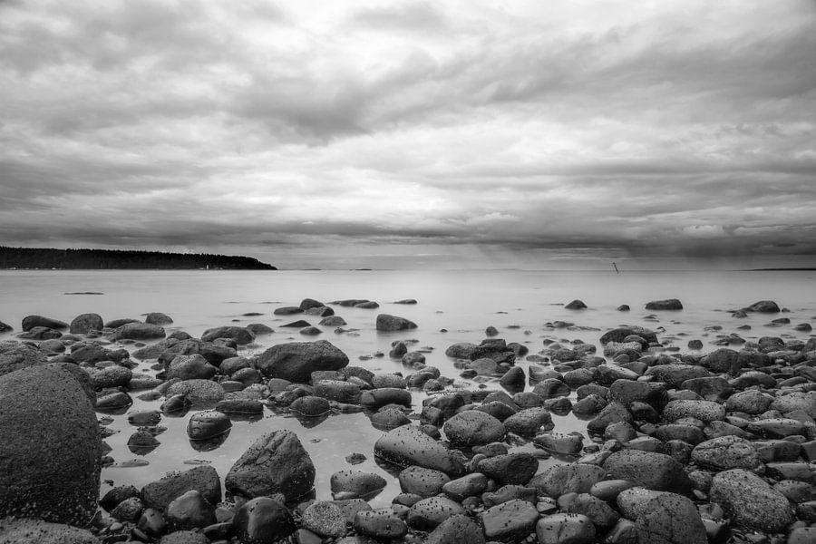 Natuur stenen op het strand van Vancouver Island van Emile Kaihatu