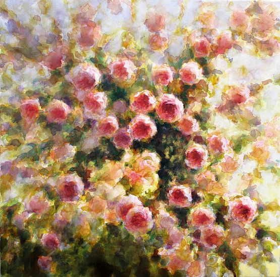 Les roses van Fabienne Monestier